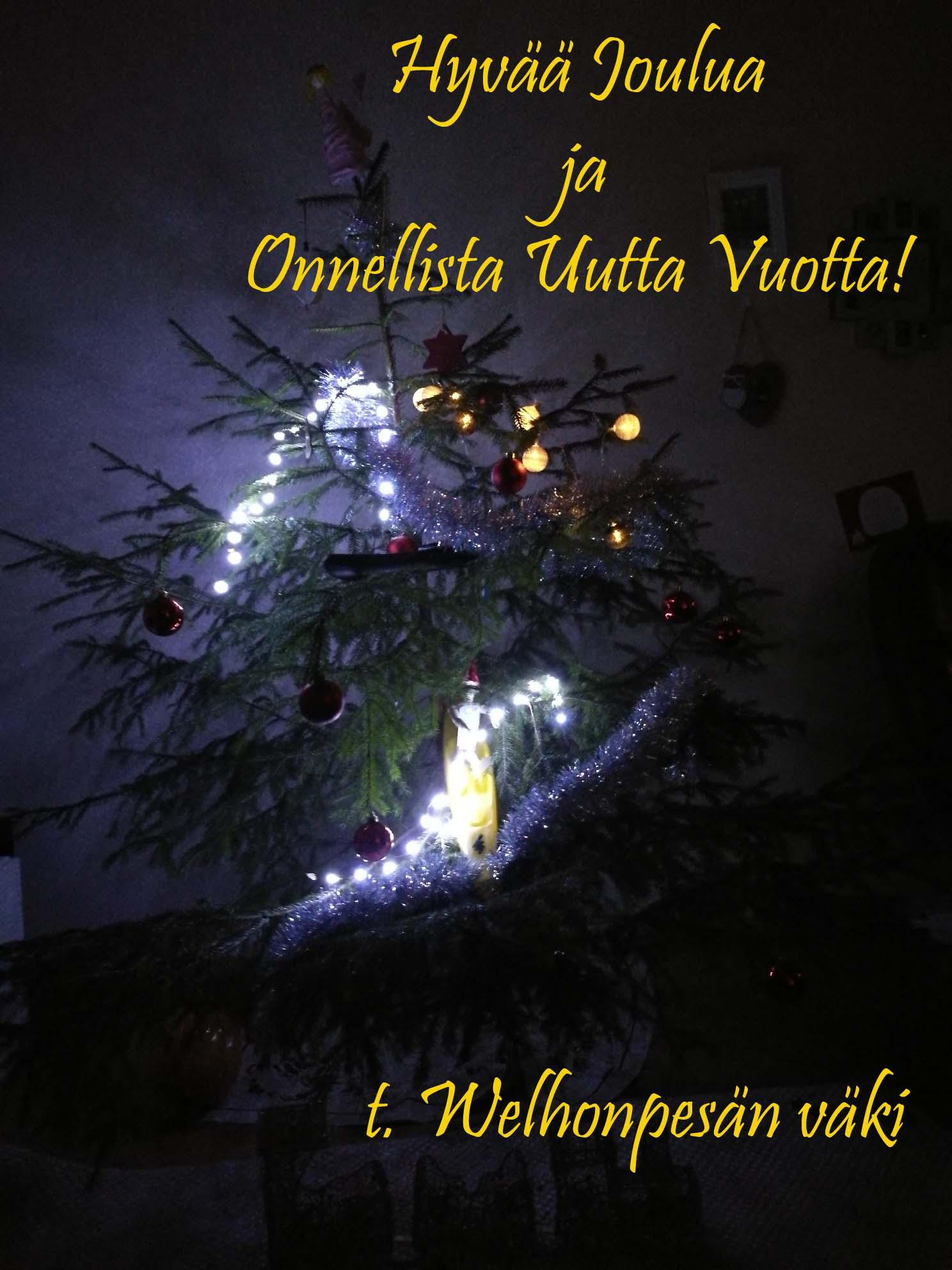 Hyvää Joulua ja melonnan iloa