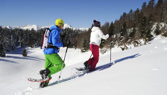 Snowshoes / Lumikengät